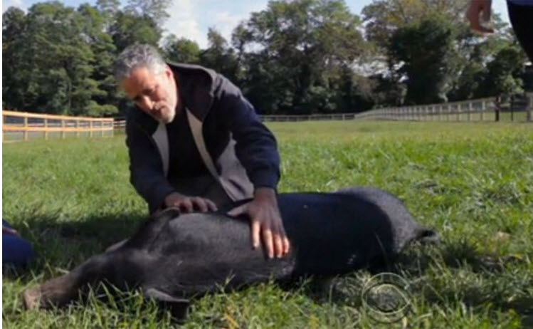 Jon and pig 10-29-2015 12-58-01 PM