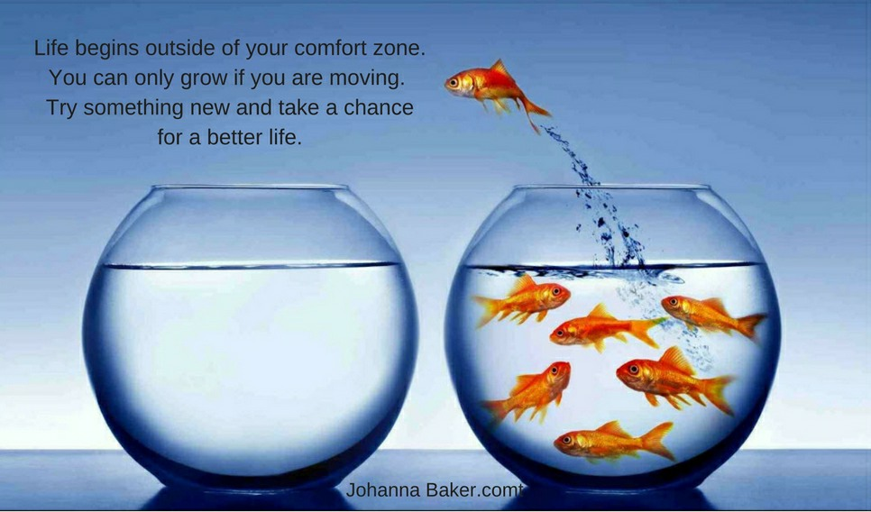 Life begins outside of your comfort zone. You can only